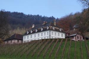 Thurgau   Schönes, unbekanntes Mostindien reviere Schweiz Rennradrevier Radrevier