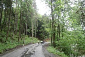 Mühlviertel – Rennradparadies nördlich der Donau reviere fruehling Rennradtour Rennradrevier Österreich